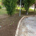 Belém aposta na recuperação de jardins
